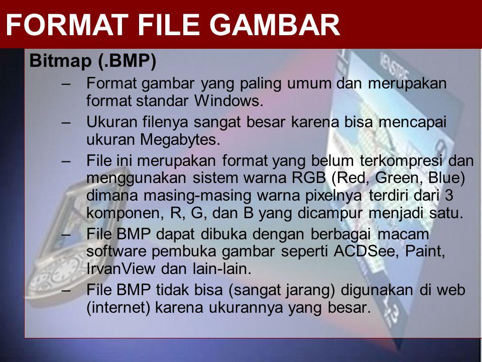 Bitmap (.BMP) –Format gambar yang paling umum dan merupakan format standar Windows. –Ukuran filenya sangat besar karena bisa mencapai ukuran Megabytes