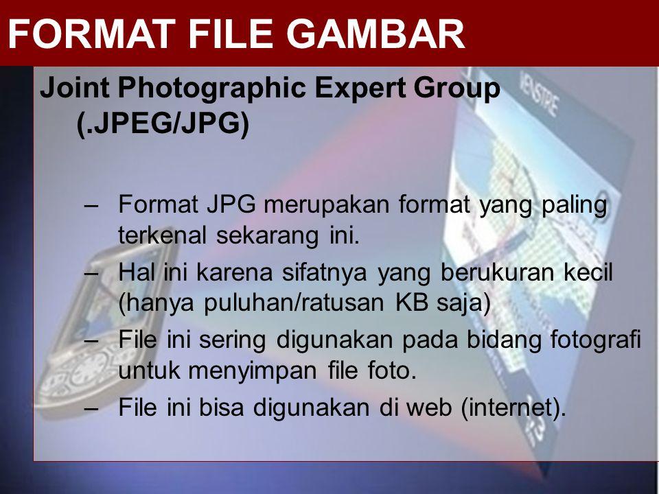Joint Photographic Expert Group (.JPEG/JPG) –Format JPG merupakan format yang paling terkenal sekarang ini. –Hal ini karena sifatnya yang berukuran ke