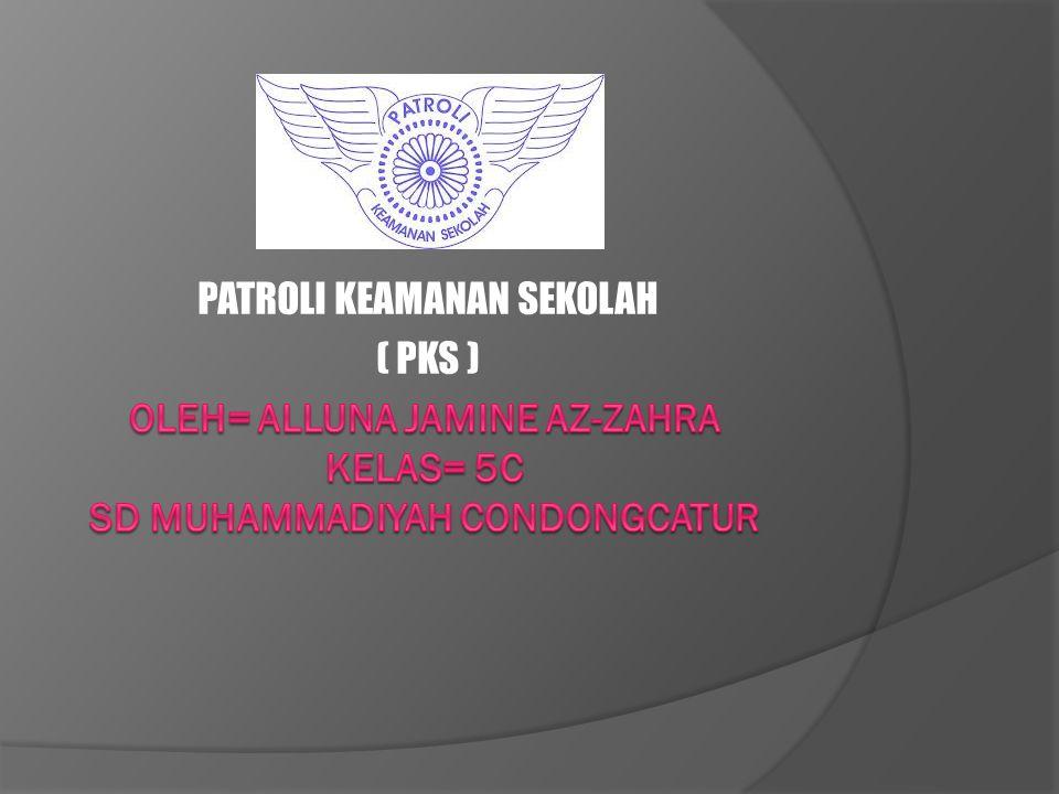 PENDAHULUAN  Patroli Keamanan Sekolah atau dapat disingkat PKS adalah salah satu jenis kegiatan ekstrakurikuler yang umum ditemui di sekolah-sekolah di Indonesia.