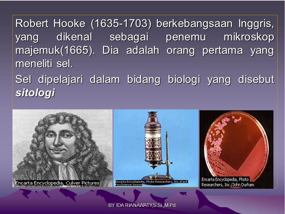 Robert Hooke (1635-1703) berkebangsaan Inggris, yang dikenal sebagai penemu mikroskop majemuk(1665). Dia adalah orang pertama yang meneliti sel. Sel d