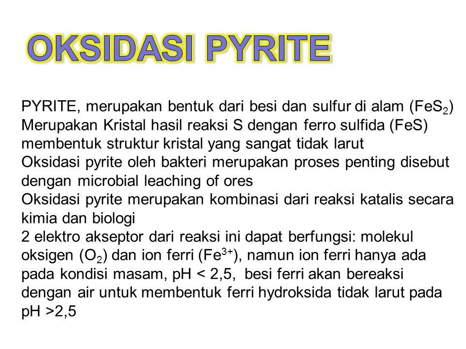 PYRITE, merupakan bentuk dari besi dan sulfur di alam (FeS 2 ) Merupakan Kristal hasil reaksi S dengan ferro sulfida (FeS) membentuk struktur kristal