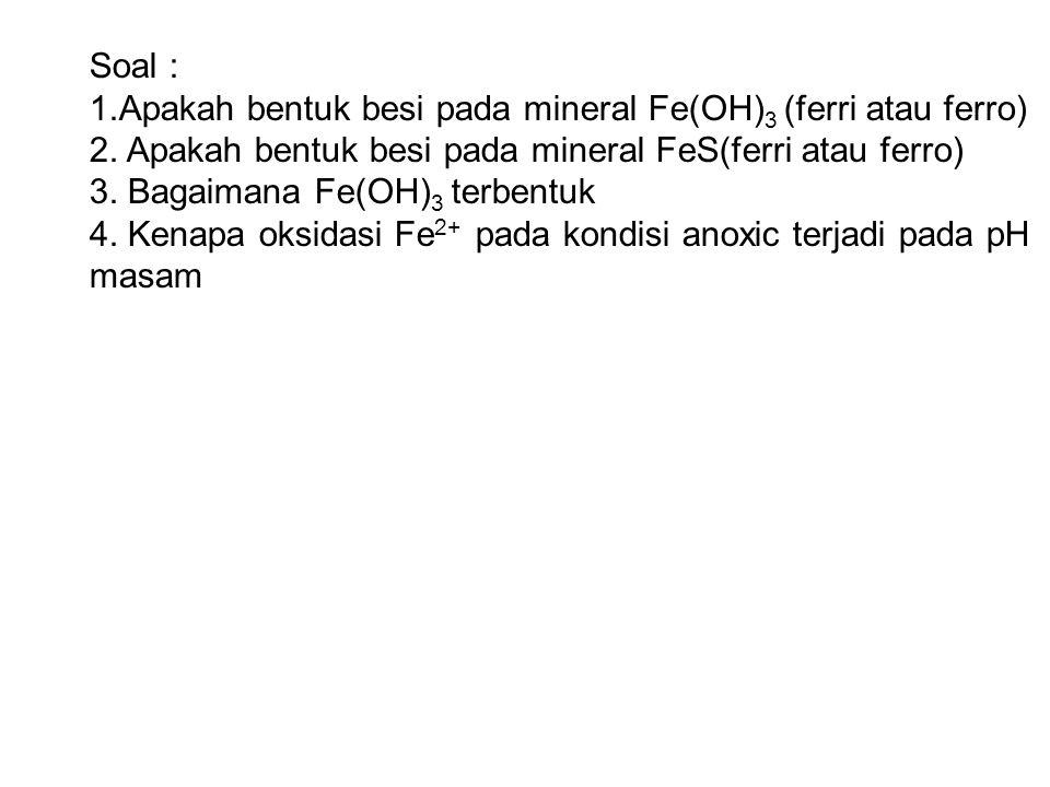 Soal : 1.Apakah bentuk besi pada mineral Fe(OH) 3 (ferri atau ferro) 2. Apakah bentuk besi pada mineral FeS(ferri atau ferro) 3. Bagaimana Fe(OH) 3 te