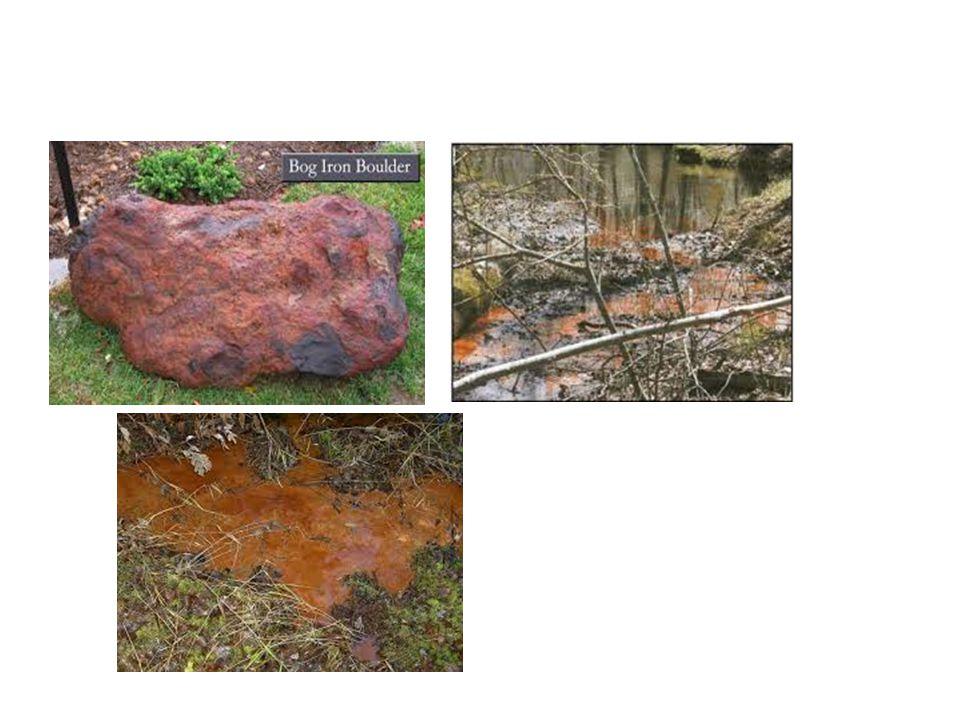  Reduksi besi feri terjadi pada tanah tergenang, bogs dan sedimen danau anoxic  Pergerakan air tanah yang kaya besi dari bogs anoxic atau tanah tergenang dapat menyebabkan pergerakan besi ferro dalam jumlah yang berarti  Ketika air iron-laden (mengandung besi) mencapai bagian oxic, besi ferro secara cepat teroksidasi secara spontan dan senyawa besi mengendap, menyebabkan terbentuk deposit coklat reaksi lengkap sbb: Fe 2+ + ¼ O 2 + H +  Fe 3+ + ½ H 2 O Fe 3+ + 3H 2 O  Fe(OH) 3 + 3H + kesimpulan Fe 2+ + ¼ O 2 + 2½H 2 O +  Fe(OH) 3 + 2H +