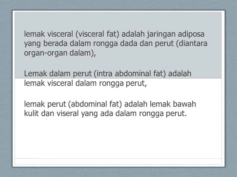lemak visceral (visceral fat) adalah jaringan adiposa yang berada dalam rongga dada dan perut (diantara organ-organ dalam), Lemak dalam perut (intra a