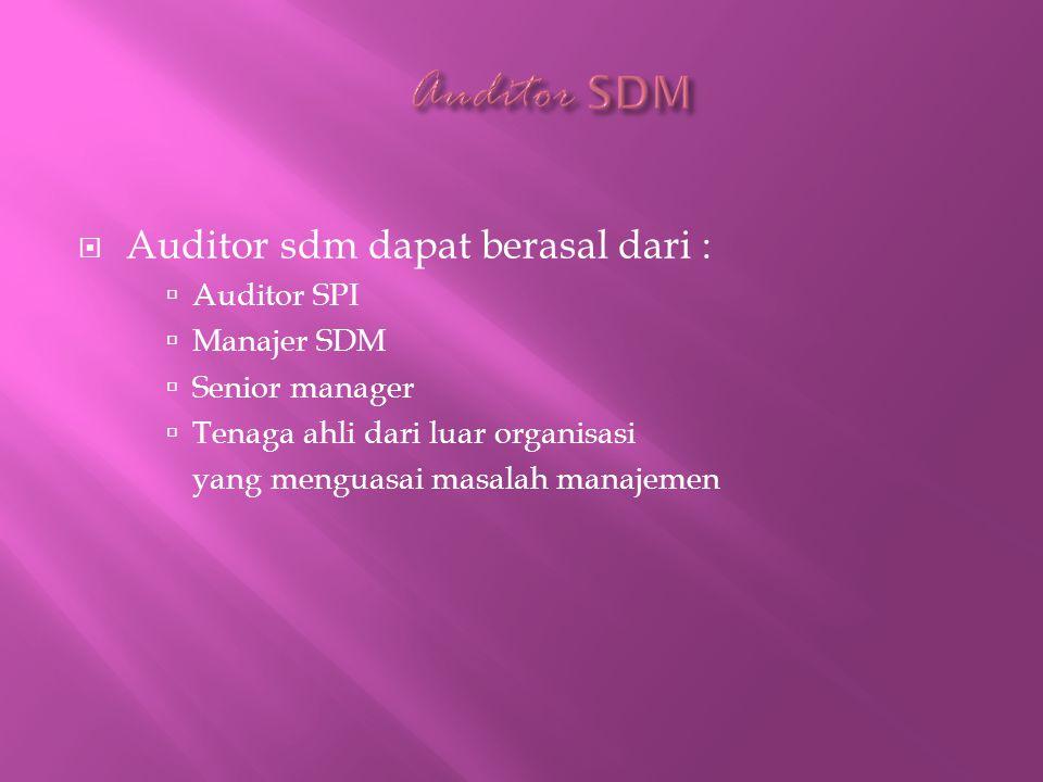  Auditor sdm dapat berasal dari :  Auditor SPI  Manajer SDM  Senior manager  Tenaga ahli dari luar organisasi yang menguasai masalah manajemen