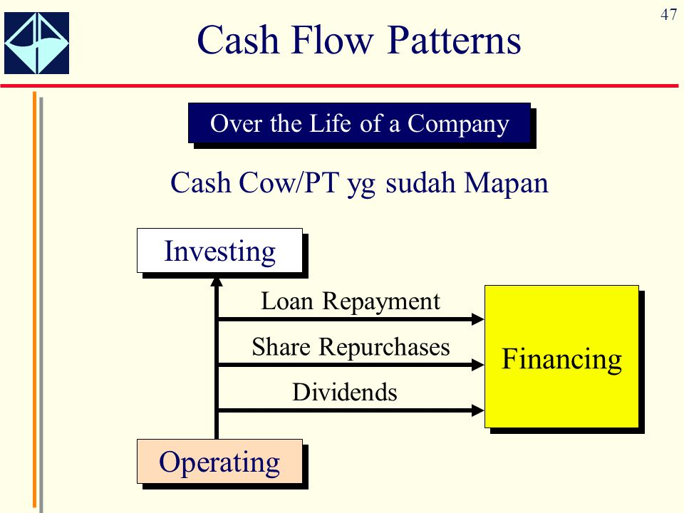 47 Cash Flow Patterns Over the Life of a Company Cash Cow/PT yg sudah Mapan Operating Investing Financing Dividends Share Repurchases Loan Repayment