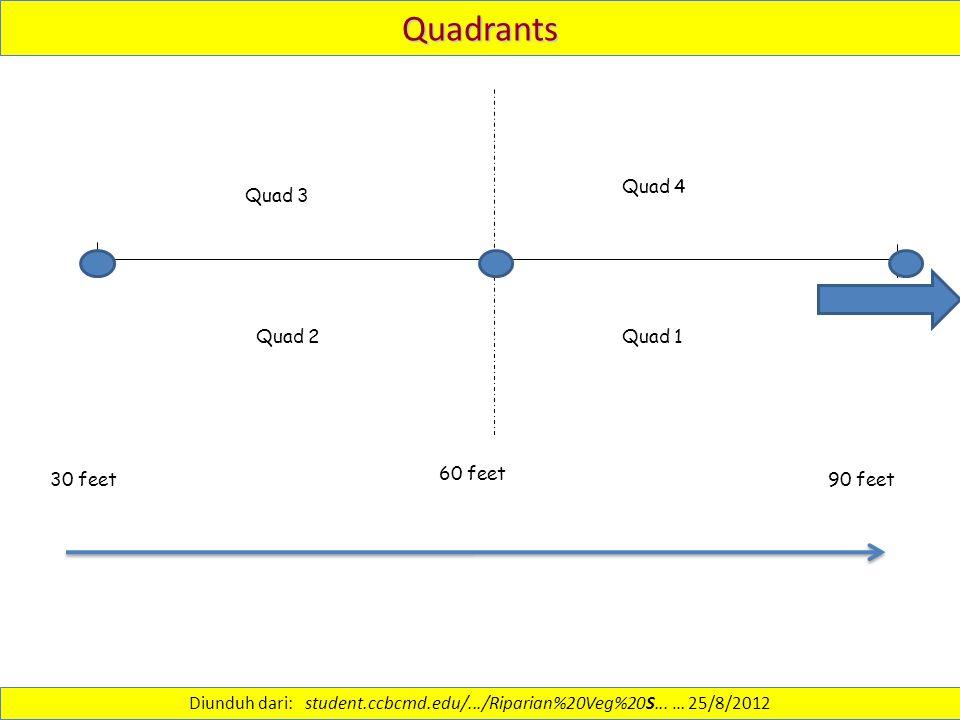 Quadrants 60 feet Quad 4 Quad 1Quad 2 Quad 3 30 feet 90 feet Diunduh dari: student.ccbcmd.edu/.../Riparian%20Veg%20S...