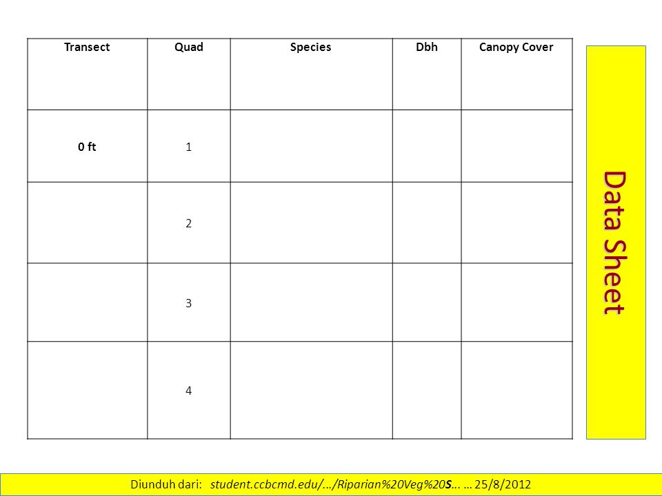 TransectQuadSpeciesDbhCanopy Cover 0 ft1 2 3 4 Data Sheet Diunduh dari: student.ccbcmd.edu/.../Riparian%20Veg%20S...
