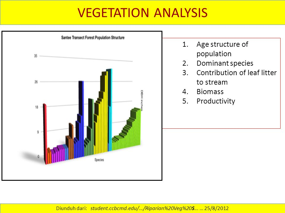 VEGETATION ANALYSIS 1.Age structure of population 2.Dominant species 3.Contribution of leaf litter to stream 4.Biomass 5.Productivity Diunduh dari: st