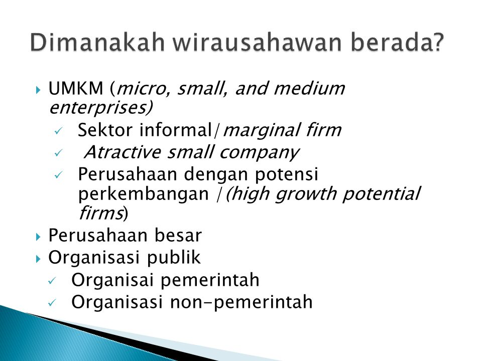  UMKM (micro, small, and medium enterprises) Sektor informal/marginal firm Atractive small company Perusahaan dengan potensi perkembangan /(high grow