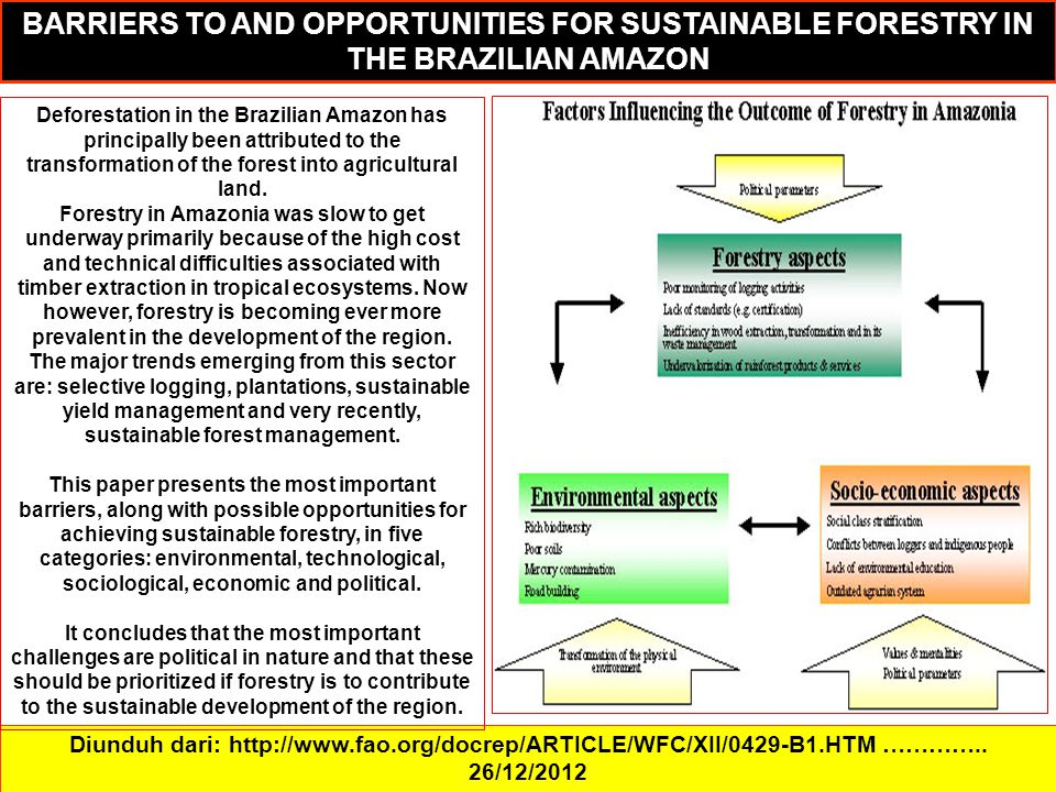 Diunduh dari: http://www.fao.org/docrep/ARTICLE/WFC/XII/0429-B1.HTM ………….. 26/12/2012 BARRIERS TO AND OPPORTUNITIES FOR SUSTAINABLE FORESTRY IN THE BR