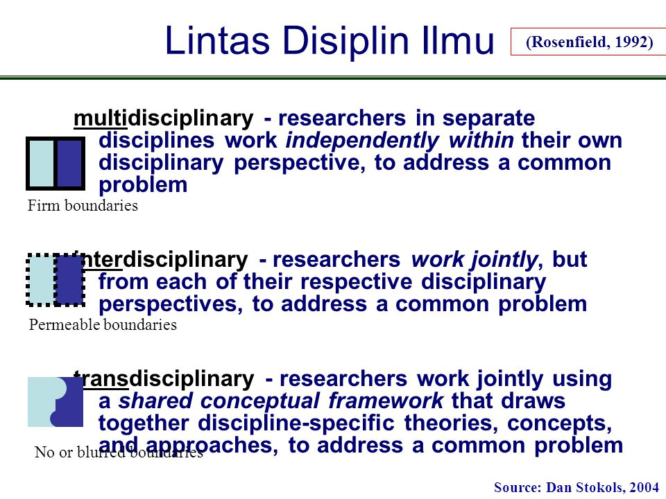 Lintas Disiplin Ilmu multidisciplinary - researchers in separate disciplines work independently within their own disciplinary perspective, to address