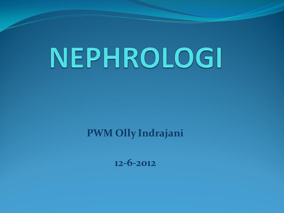 PWM Olly Indrajani 12-6-2012