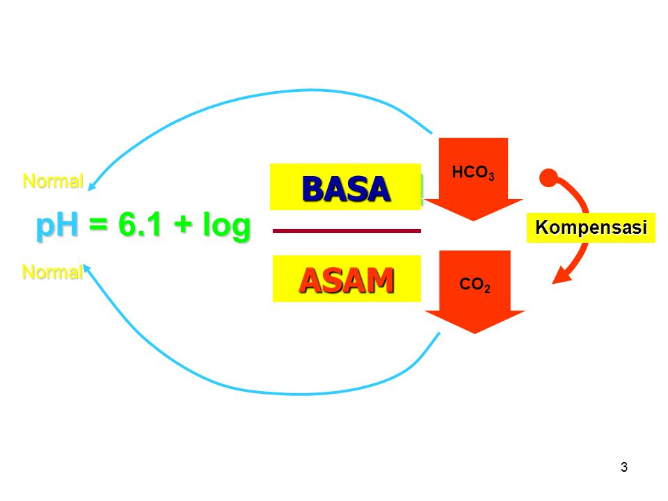 3 pH = 6.1 + log [HCO 3 - ] pCO 2  pCO 2 GINJAL PARU BASA ASAM CO 2 HCO 3 CO 2 Kompensasi Normal Normal