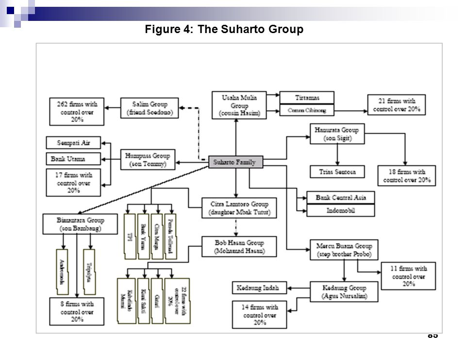 85 Figure 4: The Suharto Group