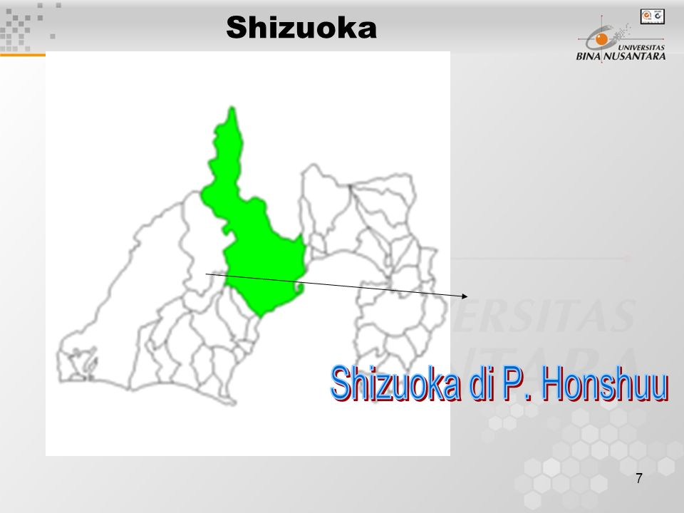 7 Shizuoka
