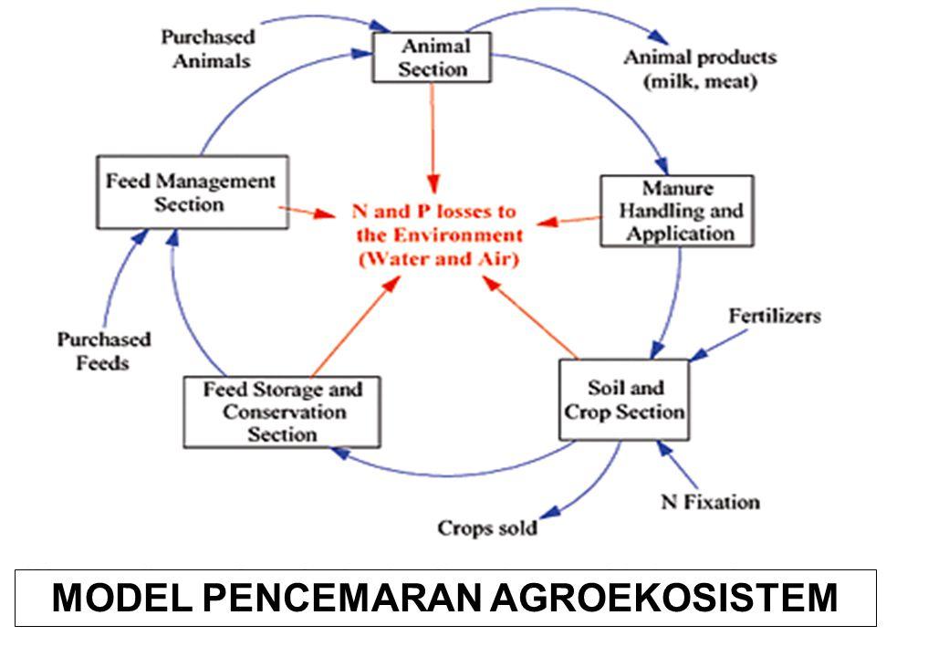 MODEL PENCEMARAN AGROEKOSISTEM