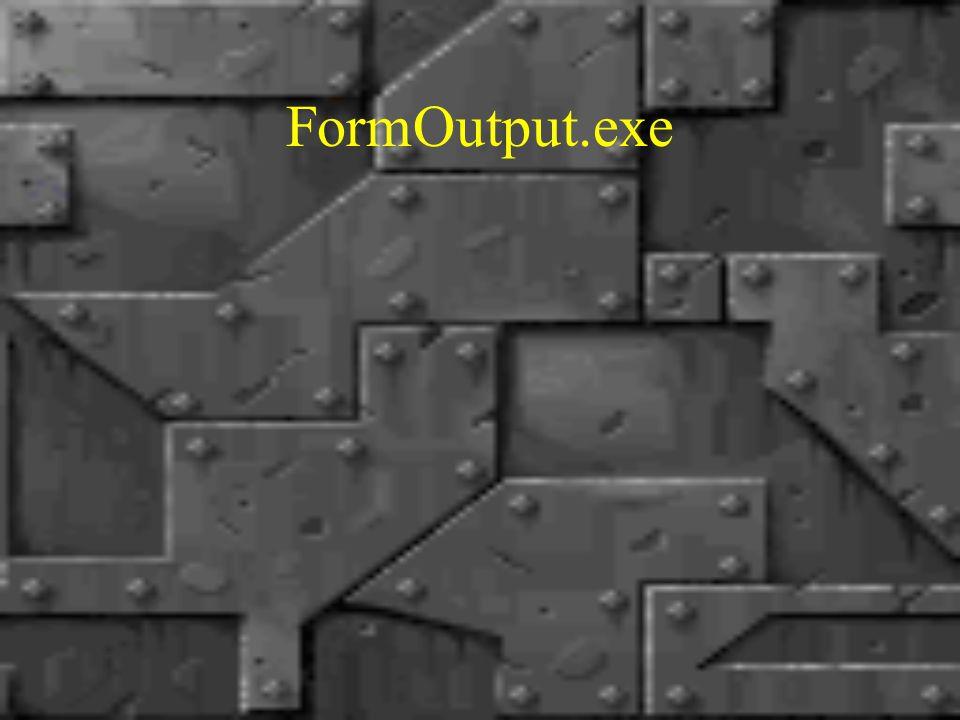 FormOutput.exe