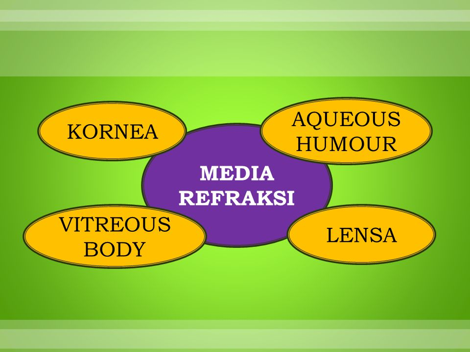 MEDIA REFRAKSI KORNEA LENSA VITREOUS BODY AQUEOUS HUMOUR