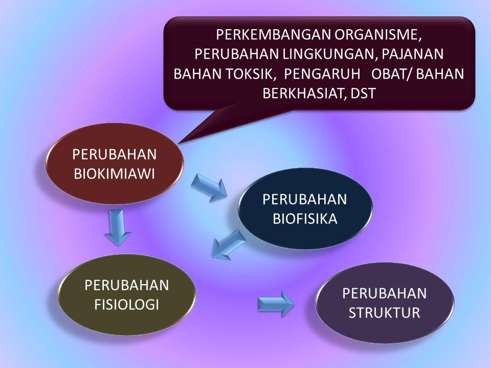 PERUBAHAN BIOKIMIAWI PERUBAHAN BIOFISIKA PERUBAHAN FISIOLOGI PERUBAHAN STRUKTUR PERKEMBANGAN ORGANISME, PERUBAHAN LINGKUNGAN, PAJANAN BAHAN TOKSIK, PENGARUH OBAT/ BAHAN BERKHASIAT, DST