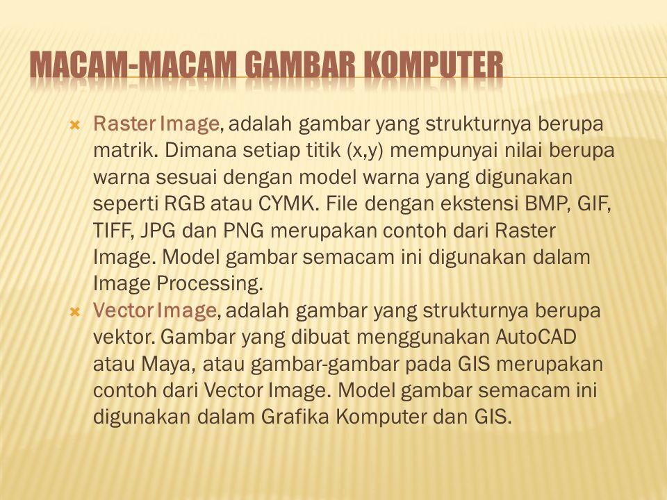  Raster Image, adalah gambar yang strukturnya berupa matrik.