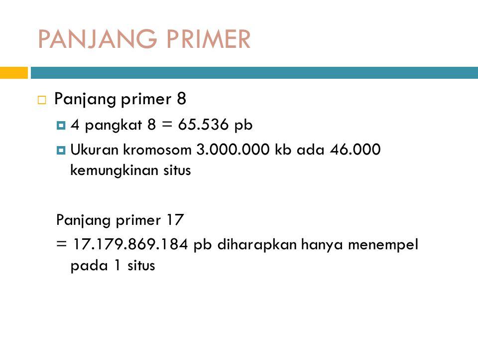 PANJANG PRIMER  Panjang primer 8  4 pangkat 8 = 65.536 pb  Ukuran kromosom 3.000.000 kb ada 46.000 kemungkinan situs Panjang primer 17 = 17.179.869.184 pb diharapkan hanya menempel pada 1 situs