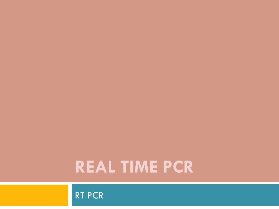 REAL TIME PCR RT PCR