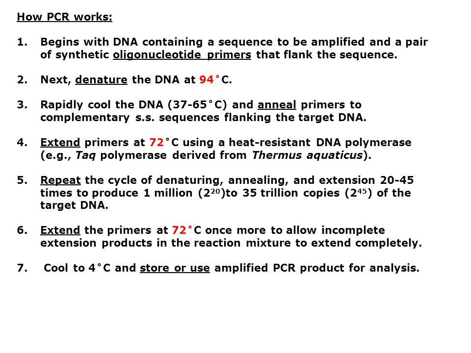 Macam PCR PCR spesial  RFLP-PCR  Reverse Transcriptase-PCR (RT-PCR)  Nested-PCR  Real Time-PCR (RT-PCR)