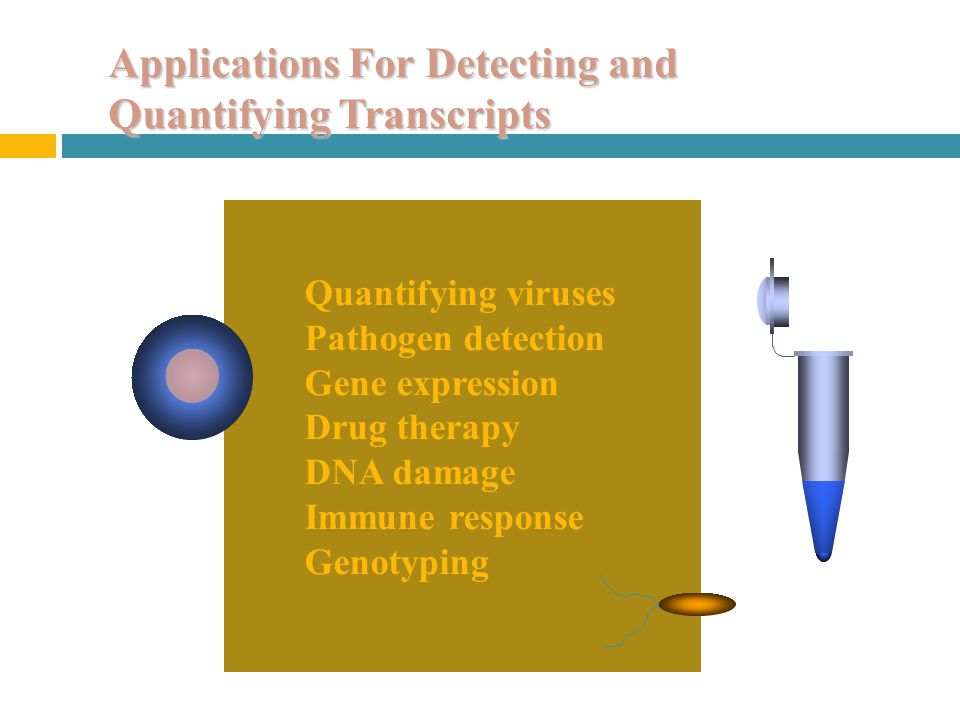 Applications For Detecting and Quantifying Transcripts Quantifying viruses Pathogen detection Gene expression Drug therapy DNA damage Immune response Genotyping