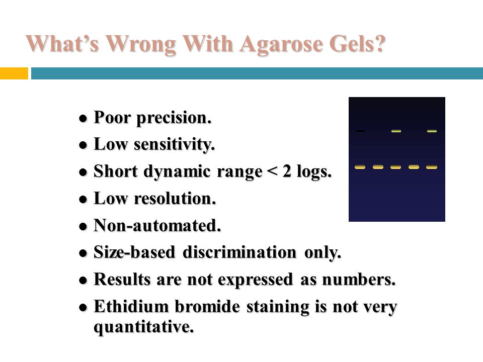 What's Wrong With Agarose Gels.l Poor precision. Low sensitivity.