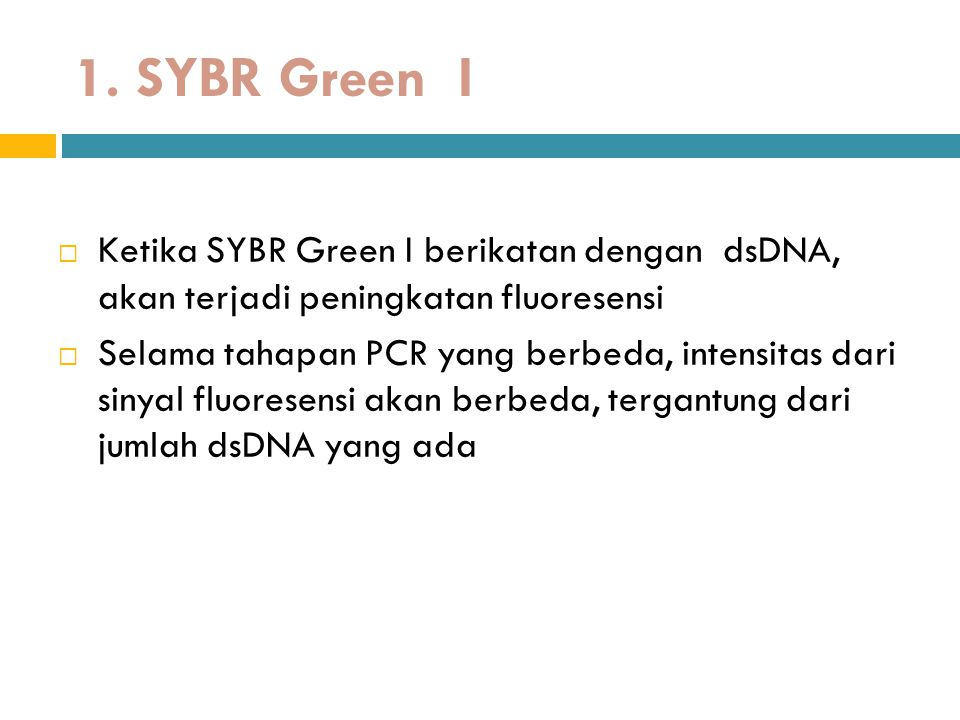 1. SYBR Green I  Ketika SYBR Green I berikatan dengan dsDNA, akan terjadi peningkatan fluoresensi  Selama tahapan PCR yang berbeda, intensitas dari