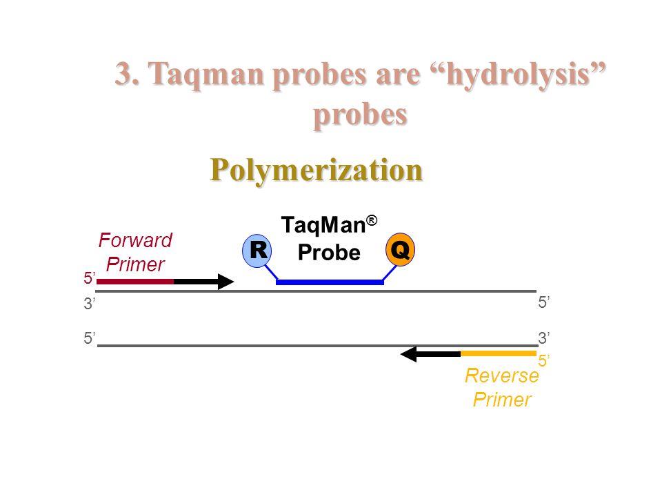 Polymerization 5' 3' 5' 3' 5' Forward Primer Reverse Primer TaqMan ® Probe R Q 3.