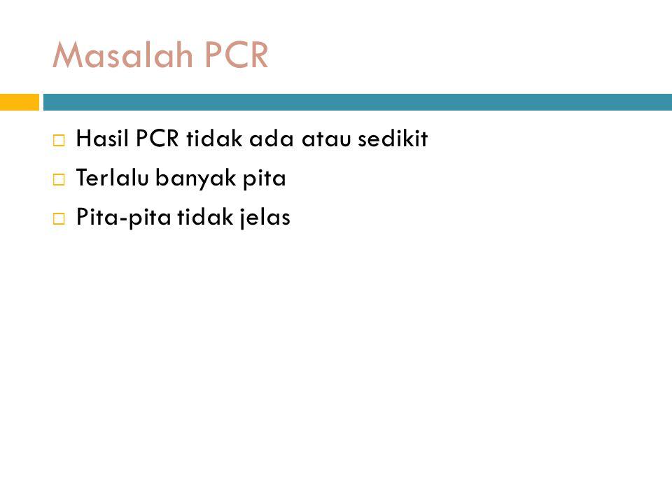 Masalah PCR  Hasil PCR tidak ada atau sedikit  Terlalu banyak pita  Pita-pita tidak jelas
