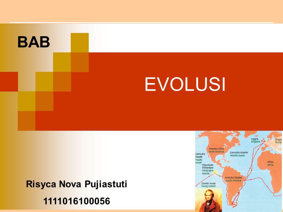 EVOLUSI BAB Risyca Nova Pujiastuti 1111016100056