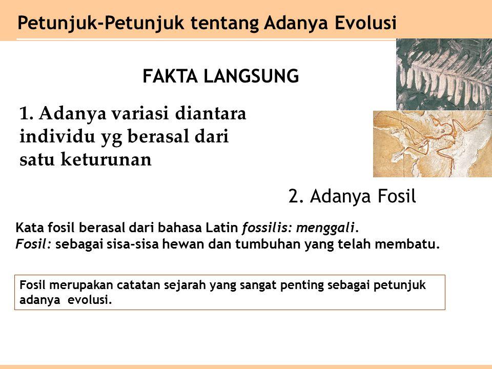 Petunjuk-Petunjuk tentang Adanya Evolusi 1.