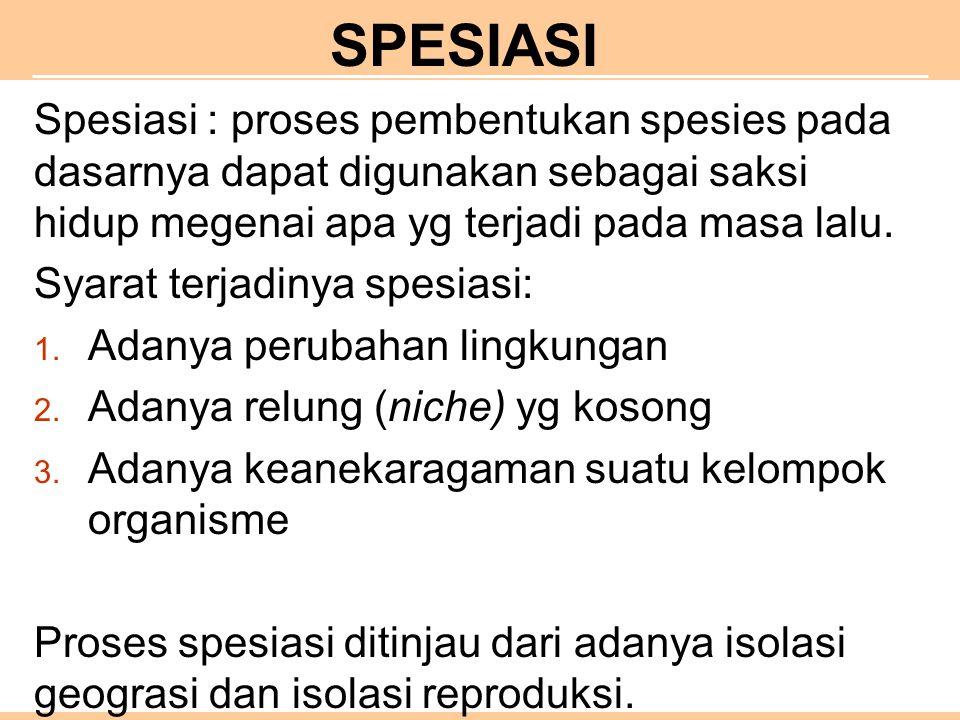 SPESIASI Spesiasi : proses pembentukan spesies pada dasarnya dapat digunakan sebagai saksi hidup megenai apa yg terjadi pada masa lalu.