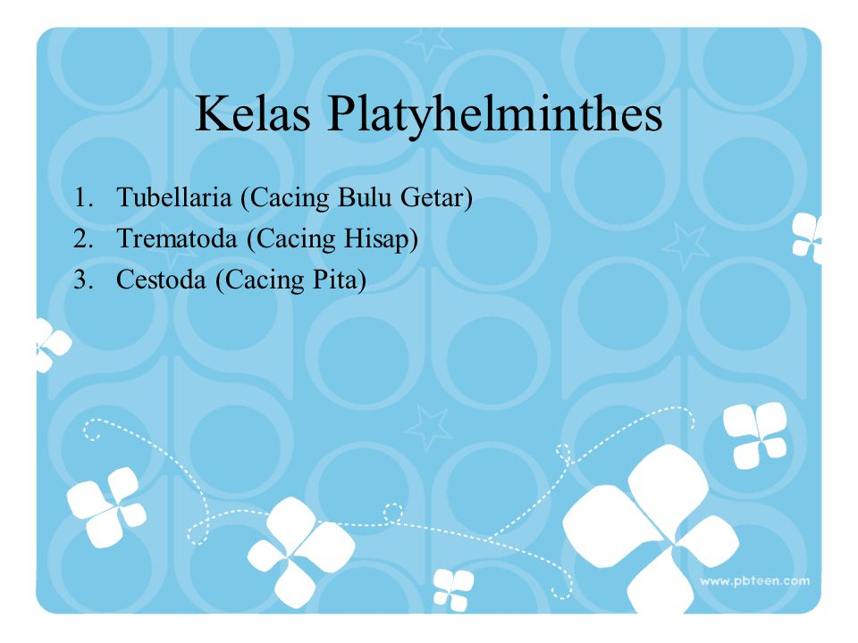 Kelas Platyhelminthes 1.Tubellaria (Cacing Bulu Getar) 2.Trematoda (Cacing Hisap) 3.Cestoda (Cacing Pita)