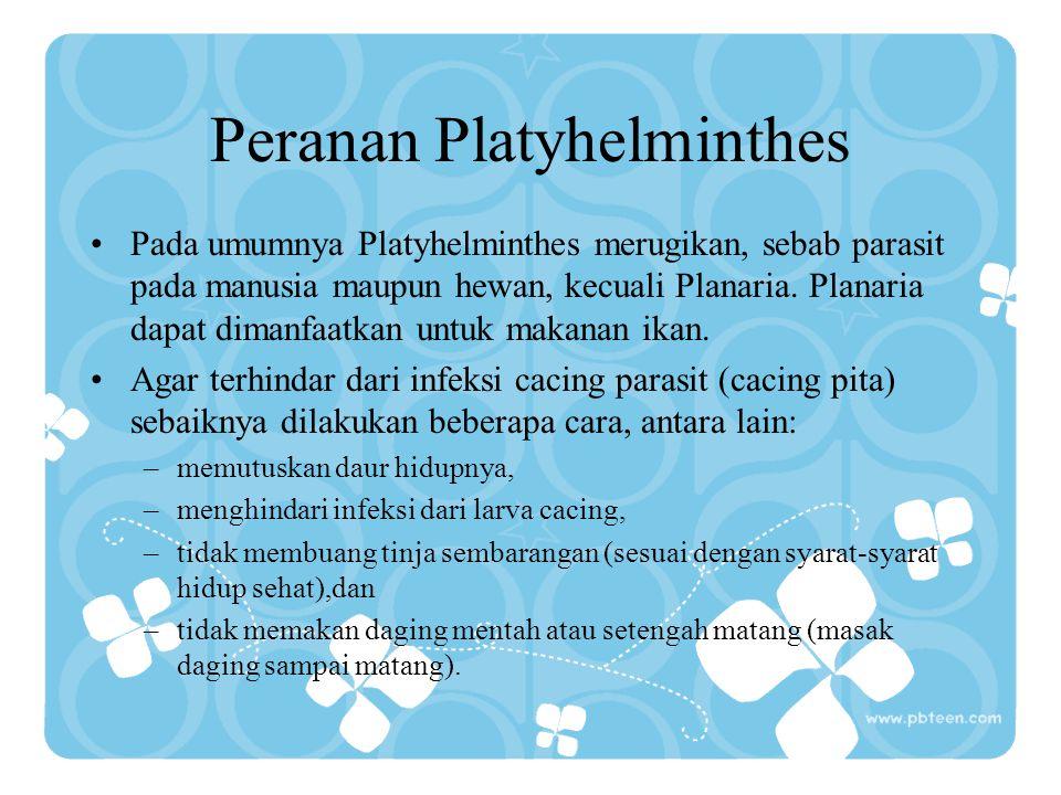 Peranan Platyhelminthes Pada umumnya Platyhelminthes merugikan, sebab parasit pada manusia maupun hewan, kecuali Planaria. Planaria dapat dimanfaatkan