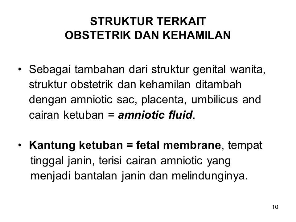 10 STRUKTUR TERKAIT OBSTETRIK DAN KEHAMILAN Sebagai tambahan dari struktur genital wanita, struktur obstetrik dan kehamilan ditambah dengan amniotic s
