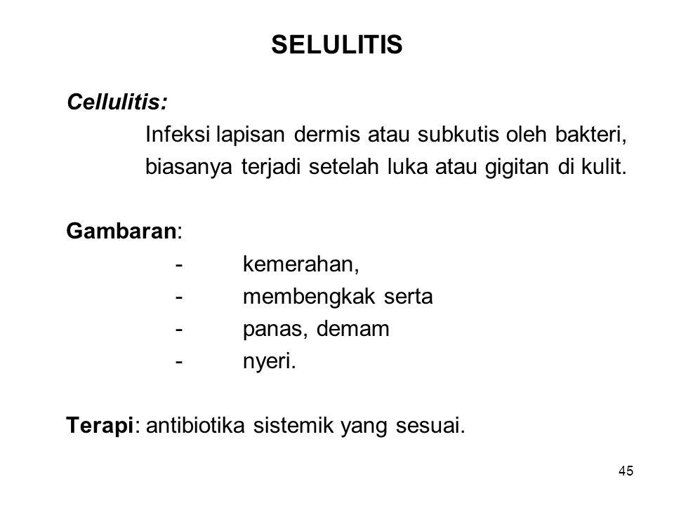 45 SELULITIS Cellulitis: Infeksi lapisan dermis atau subkutis oleh bakteri, biasanya terjadi setelah luka atau gigitan di kulit. Gambaran: -kemerahan,