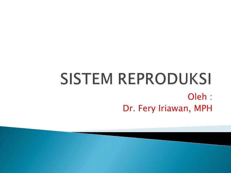 Oleh : Dr. Fery Iriawan, MPH