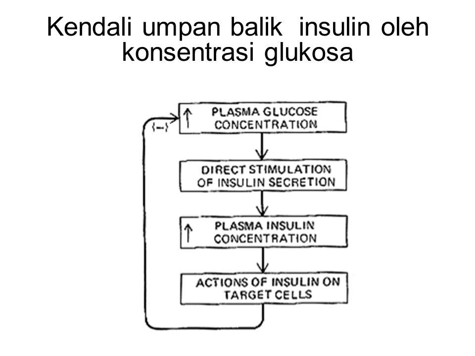 Kendali Substrat-hormon Glukosa dan insulin: ketika kadar glukosa meningkat, ia menstimulasi pankreas untuk menghasilkan insulin