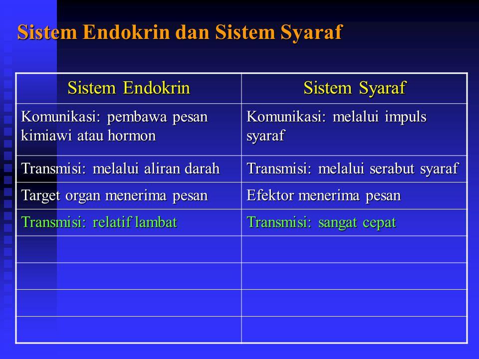 Sistem Endokrin dan Sistem Syaraf Sistem Endokrin Sistem Syaraf Komunikasi: pembawa pesan kimiawi atau hormon Komunikasi: melalui impuls syaraf Transmisi: melalui aliran darah Transmisi: melalui serabut syaraf Target organ menerima pesan Efektor menerima pesan Transmisi: relatif lambat