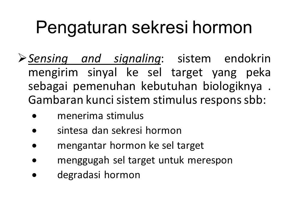 Sistem dan Hormon Utama Organisasi komando dari atas ke bawah.