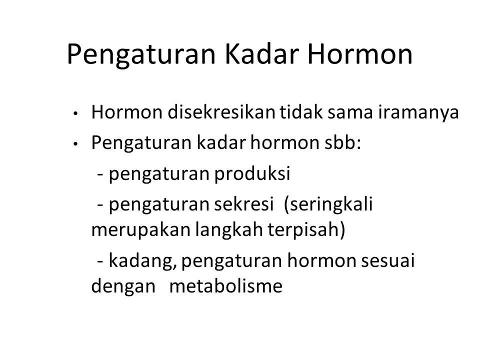Seberapa Besar Dampak Hormon .