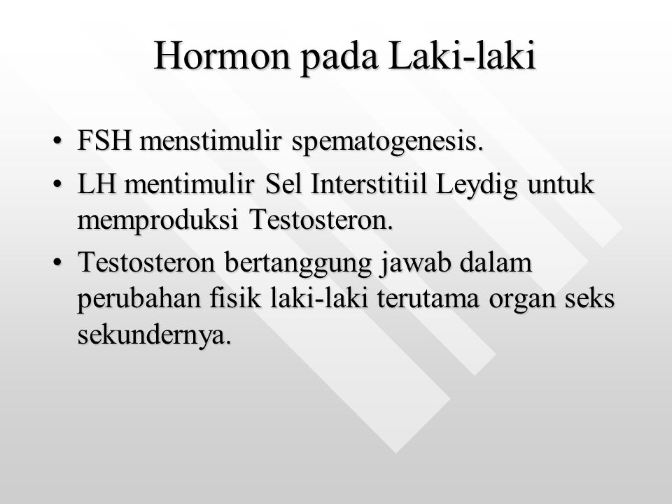 Hormon pada Laki-laki FSH menstimulir spematogenesis.FSH menstimulir spematogenesis. LH mentimulir Sel Interstitiil Leydig untuk memproduksi Testoster