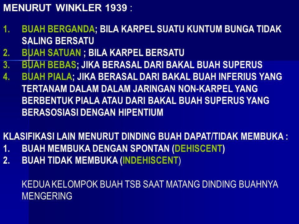 MENURUT WINKLER 1939 : 1.BUAH BERGANDA; BILA KARPEL SUATU KUNTUM BUNGA TIDAK SALING BERSATU 2.BUAH SATUAN ; BILA KARPEL BERSATU 3.BUAH BEBAS; JIKA BERASAL DARI BAKAL BUAH SUPERUS 4.BUAH PIALA; JIKA BERASAL DARI BAKAL BUAH INFERIUS YANG TERTANAM DALAM DALAM JARINGAN NON-KARPEL YANG BERBENTUK PIALA ATAU DARI BAKAL BUAH SUPERUS YANG BERASOSIASI DENGAN HIPENTIUM KLASIFIKASI LAIN MENURUT DINDING BUAH DAPAT/TIDAK MEMBUKA : 1.BUAH MEMBUKA DENGAN SPONTAN (DEHISCENT) 2.BUAH TIDAK MEMBUKA (INDEHISCENT ) KEDUA KELOMPOK BUAH TSB SAAT MATANG DINDING BUAHNYA MENGERING