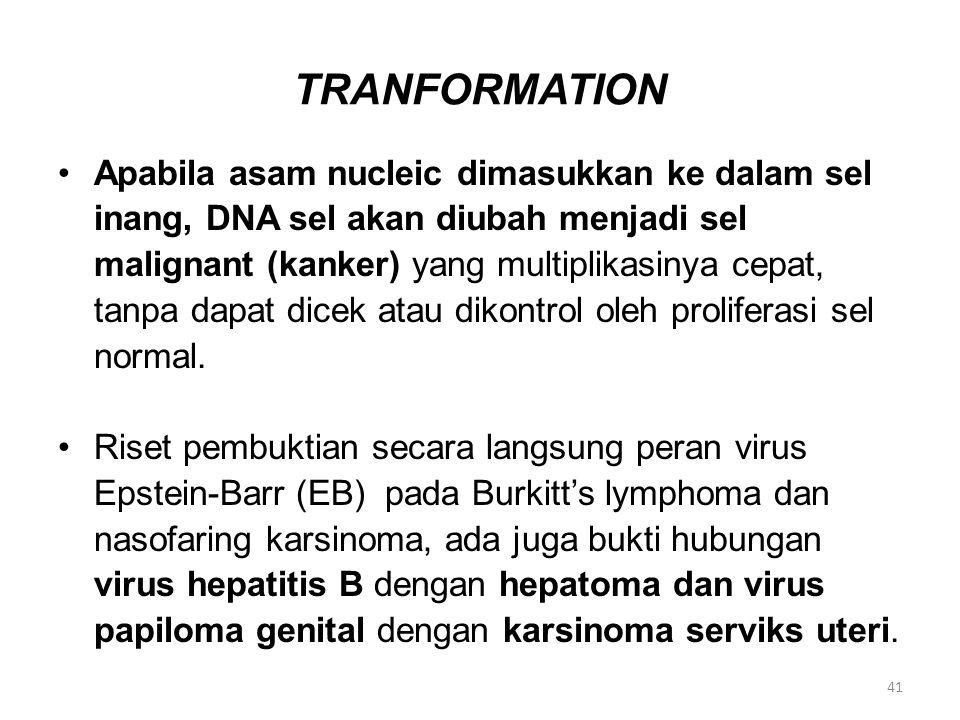 TRANFORMATION Apabila asam nucleic dimasukkan ke dalam sel inang, DNA sel akan diubah menjadi sel malignant (kanker) yang multiplikasinya cepat, tanpa