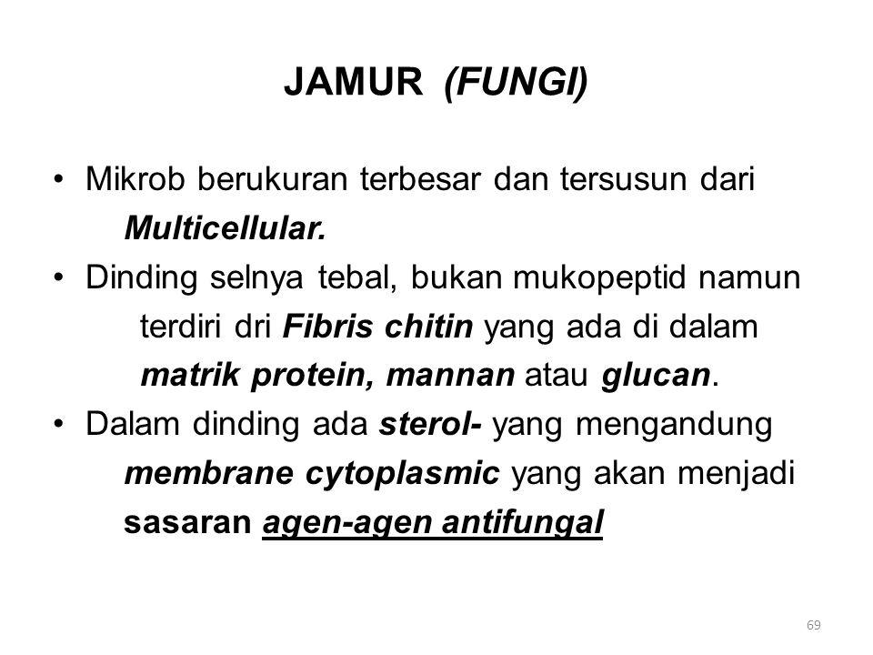 JAMUR (FUNGI) Mikrob berukuran terbesar dan tersusun dari Multicellular. Dinding selnya tebal, bukan mukopeptid namun terdiri dri Fibris chitin yang a