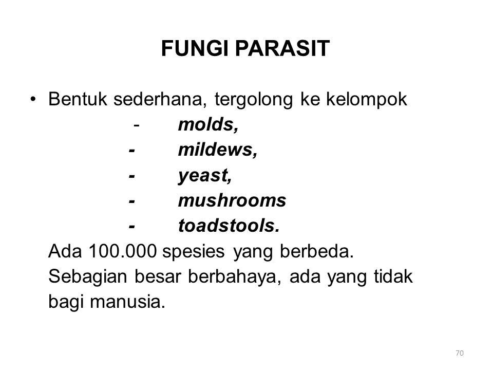 FUNGI PARASIT Bentuk sederhana, tergolong ke kelompok -molds, -mildews, -yeast, -mushrooms -toadstools. Ada 100.000 spesies yang berbeda. Sebagian bes